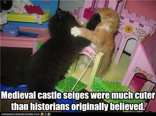 battling caption captioned castle cat Cats cute cuter fighting historians history kitten medieval misinformation playset sieges - 4276505344