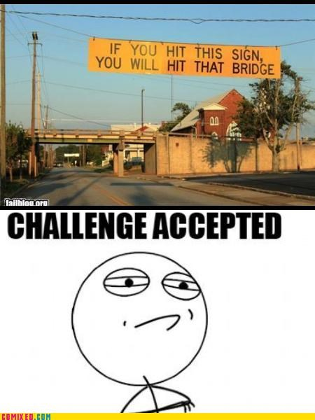bridge,Challenge Accepted,signs,the internets,warning