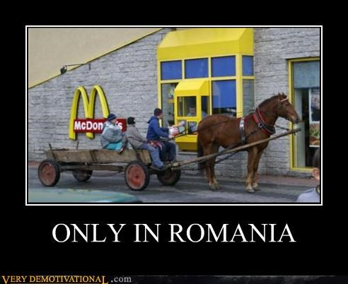 awesome drive thru horse McDonald's romania wtf