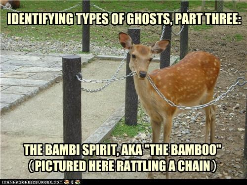 "THE BAMBI SPIRIT, AKA ""THE BAMBOO"" PICTURED HERE RATTLING A CHAIN IDENTIFYING TYPES OF GHOSTS, PART THREE: ( )"