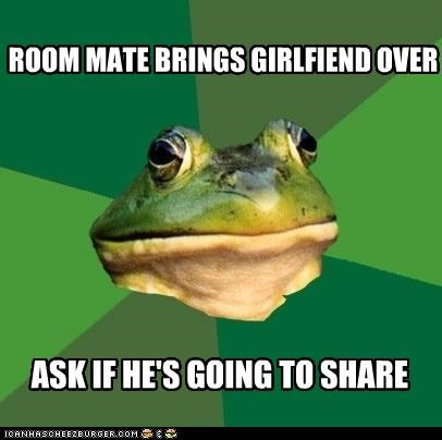 foul bachelor frog,girlfriend,room mate,sharing is caring