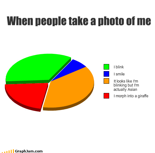 animorphs,blinking,giraffes,morph,photographs,Pie Chart