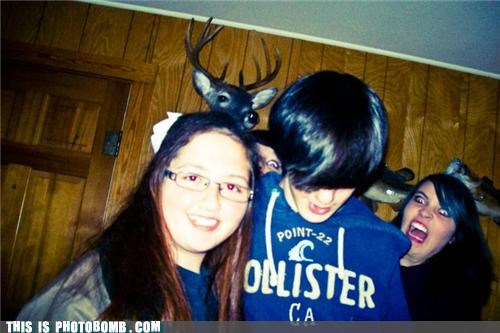 deer head,fashion,hollister,photobomb,rage,wtf