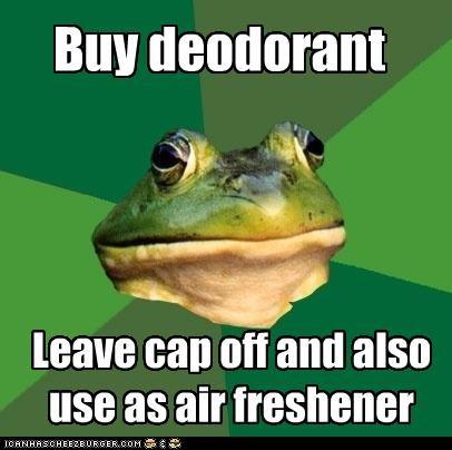 air freshener,deodorant,foul bachelor frog,twofer