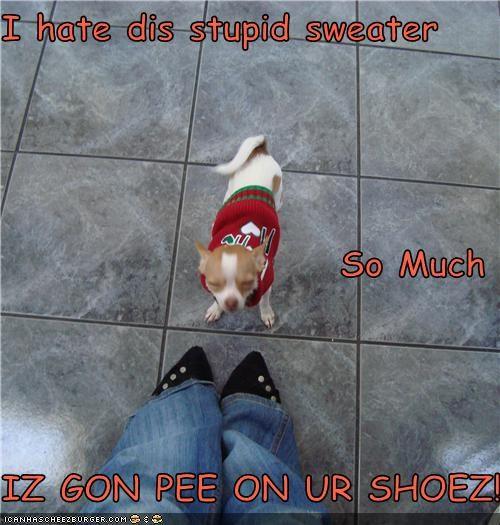 Cheezburger Image 4282145792