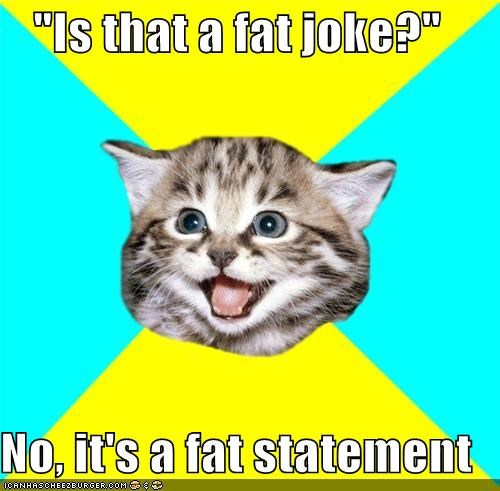 fact,fat,Happy Kitten,joke,statement