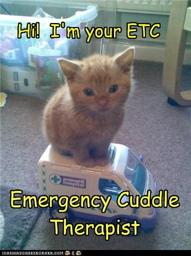 Hi! I'm your ETC Emergency Cuddle Therapist