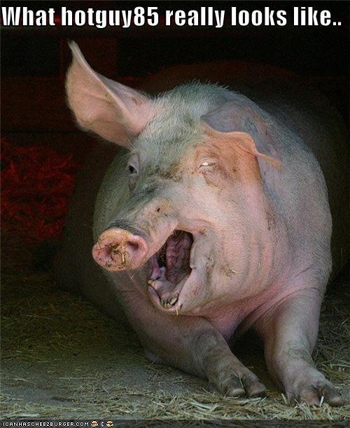 animals critters gross internet pig - 4285184768