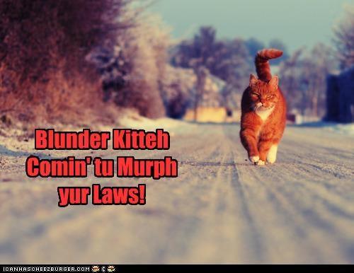 Blunder Kitteh Comin' tu Murph yur Laws!