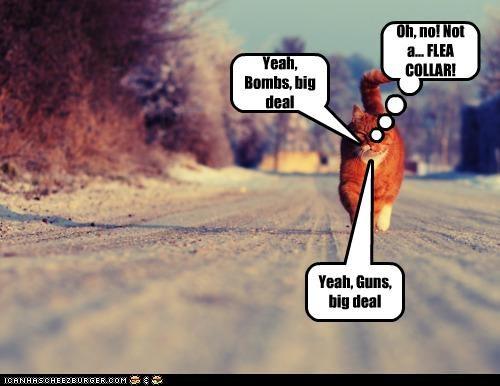Yeah, Bombs, big deal Yeah, Guns, big deal Oh, no! Not a... FLEA COLLAR!
