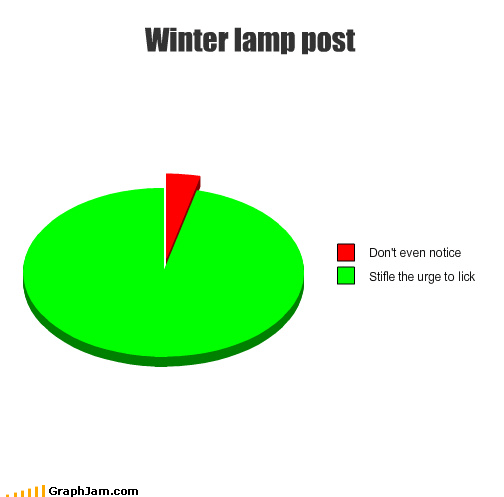 frozen lamp post lick Pie Chart stuck tongue winter