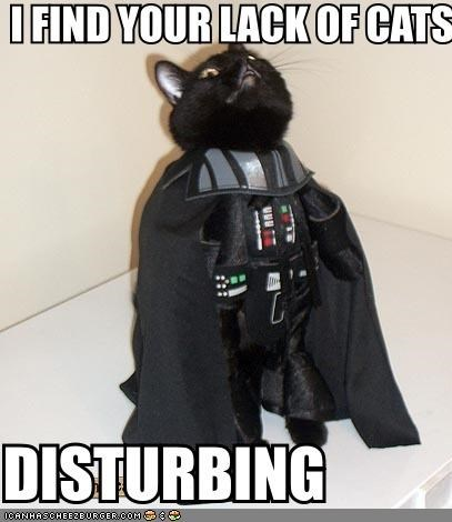 basement cat caption captioned costume darth vader movies sci fi star wars the dark side
