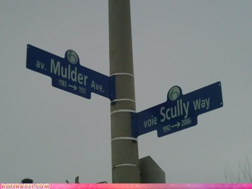 funny,Hall of Fame,Mulder,Scully,x files