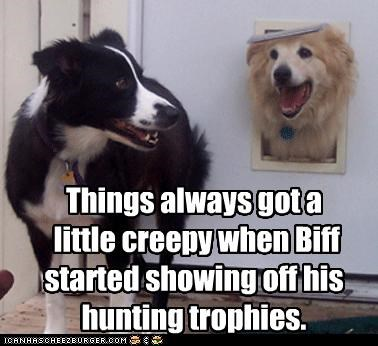 border collie,creepy,dog door,golden retriever,head,hunting,showing off,trophies