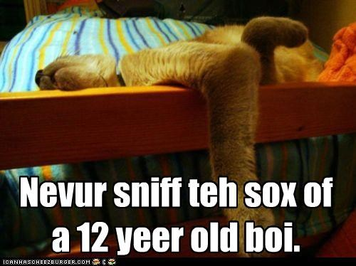 12 year old advice bad idea boy caption captioned cat human injured kitteh down odor sleeping smelling sniff sniffing socks