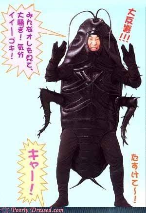 bug cockroach eww Japan squish - 4289536768