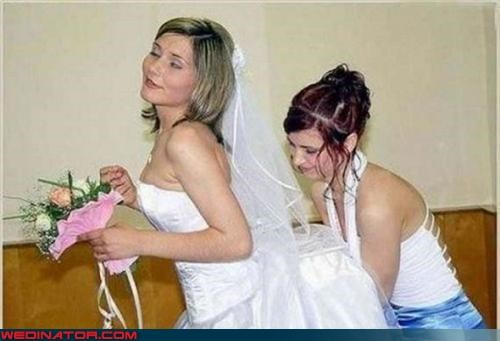 bridal assistance,bride,bridesmaid,Crazy Brides,drunk bride,fashion is my passion,funny bride picture,funny wedding photos,miscellaneous-oops,veil,woozy bride