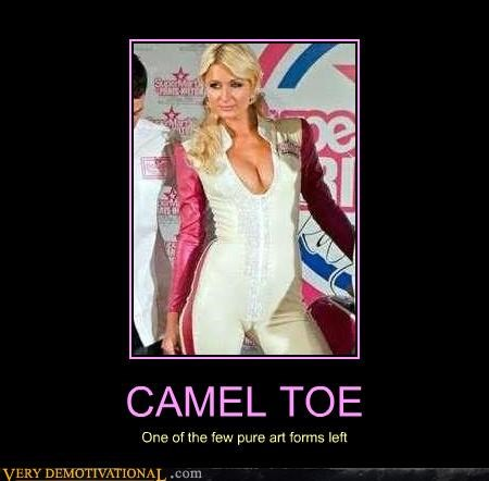 CAMEL TOE One of the few pure art forms left