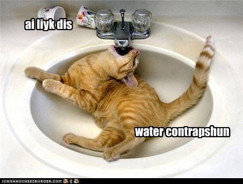 ai liyk dis water contrapshun