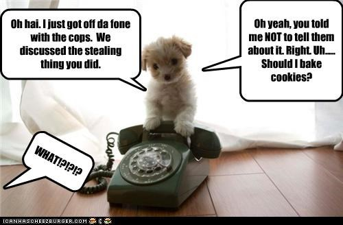 Oh hai. I just got off da fone with the cops. We discussed the stealing thing you did. Oh yeah, you told me NOT to tell them about it. Right. Uh..... Should I bake cookies? WHAT!?!?!?