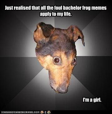 Depression Dog,foul bachelor frog,mixing the meme streams