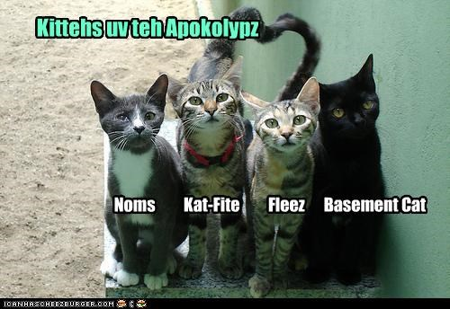 apocalypse basement cat caption captioned cat Cats four horsemen kittehs names - 4292672768