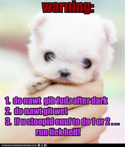 warning: 1. do nawt gib fudz after dark 2. do nawt git wet 3. if u stoopid enuf to do 1 or 2 . . . run liek hell!