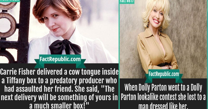 10 fun facts that'll significantly improve your trivia knowledge.