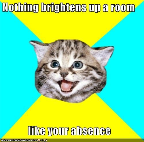 brightens the room,go away,Happy Kitten,Hipster Kitty,such a jerk