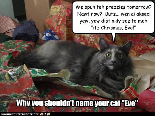 """We opun teh prezzies tomorrow? Nawt now? Butz... wen ai aksed yew, yew distinkly sez to meh """"itz Chrismus, Eve!"""" Why you shouldn't name your cat """"Eve"""""""