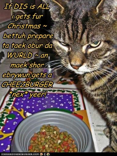 If DIS is ALL i gets fur Christmas ~ bettuh prepare ta taek obur da WURLD ~ an maek shor ebrywun gets a CHEEZBURGER *nex* yeer!