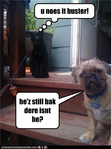 he'z still bak dere isnt he? u noes it buster!