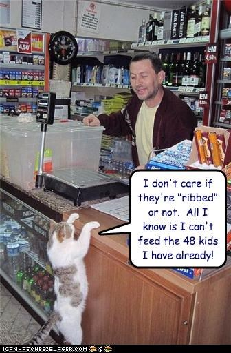 48 cant-afford caption captioned cat cost dont-care kids money protection purchase - 4297619456