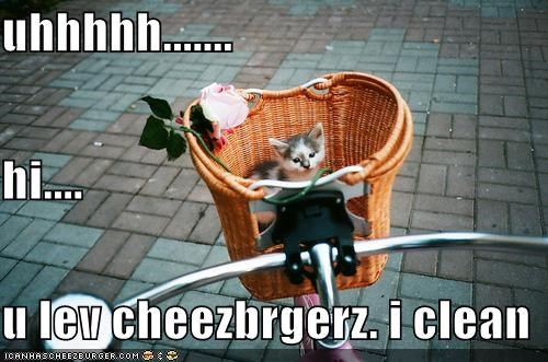 Cheezburger Image 4298138112