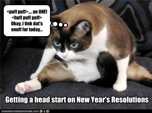 caption captioned exercise fat holidays new years resolutions sit ups tired - 4298511104