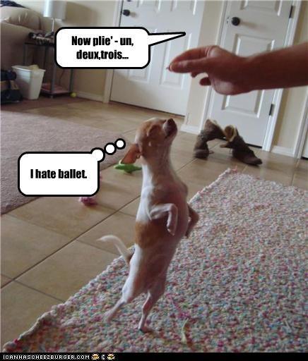 Now plie' - un, deux,trois... I hate ballet.