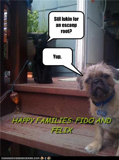 Stil lukin for an escaep root? Yup. HAPPY FAMILIES: FIDO AND FELIX
