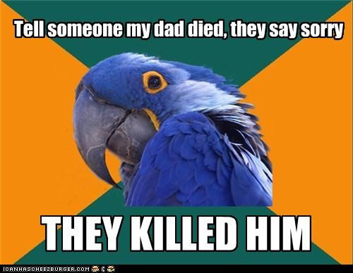dad died murderer Paranoid Parrot sorry - 4299106816