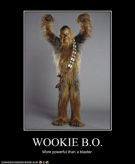 chewbacca demotivational funny Movie sci fi star wars - 4299384064