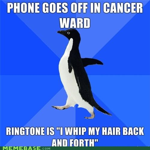 cancer socially awkward penguin whip my hair willow - 4299387136
