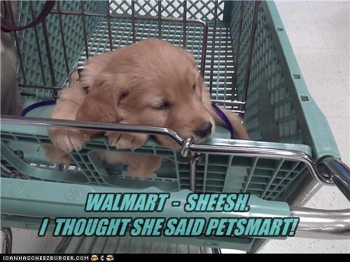 WALMART - SHEESH. I THOUGHT SHE SAID PETSMART!