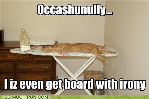 board,bored,cat,definition fail,homophone,ironing board,irony,literalism,situational irony