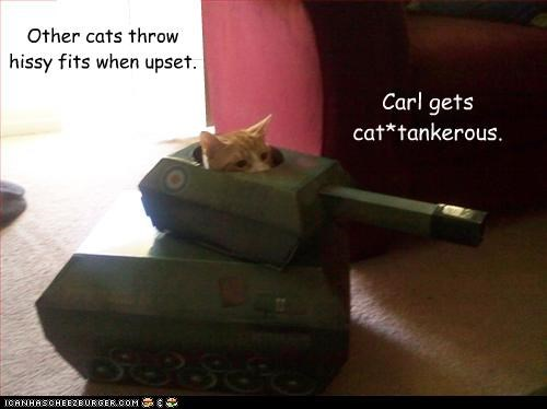 angry cantankerous caption captioned cat Cats driving hissy fits other pun tank upset - 4299864832