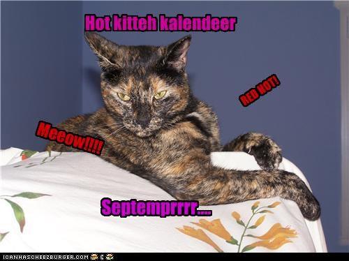 Hot kitteh kalendeer RED HOT! Meeow!!!! Septemprrrr....