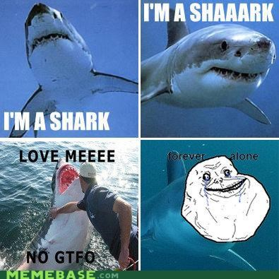 animemes,forever alone,loan shark,shark