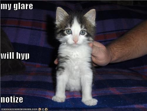 Cheezburger Image 4300639744