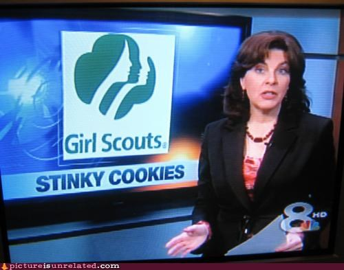 apt description,cookies,girl scouts,news report,smells,wtf