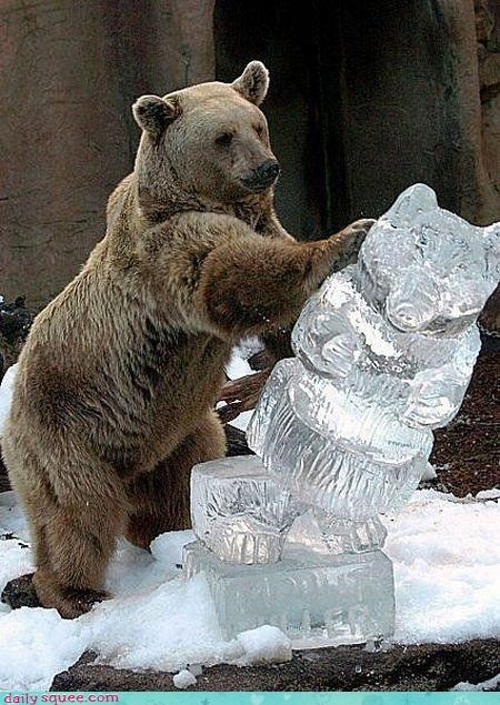 acting like animals,artisan,bear,failure,ice sculpture,infuriated,likeness,outraged,sculptor,Sweden,upset