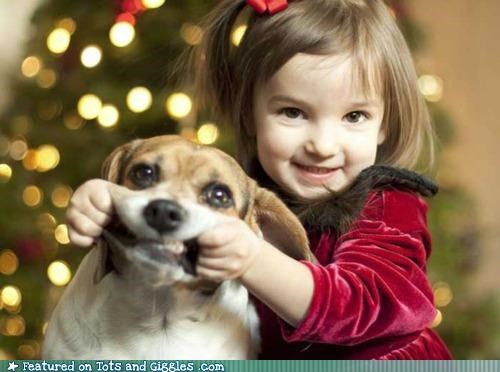 christmas,dogs,girl,smile