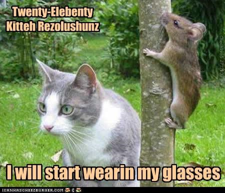 Twenty-Elebenty Kitteh Rezolushunz I will start wearin my glasses Chech1965 271210